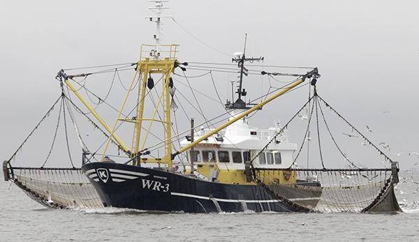 Assurance des corps, bateau de pêche, assurance maritime
